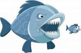 pesce_grande.jpg